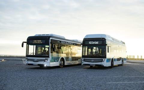 Toyota logo op emissievrije bussen van CaetanoBus